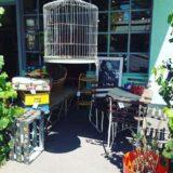 Whatever at Willunga - Adeliade Vintage Shop